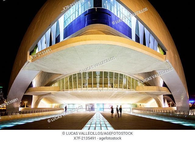 Palace of Arts 'Reina Sofia', City of Arts and Sciences. Valencia, Spain
