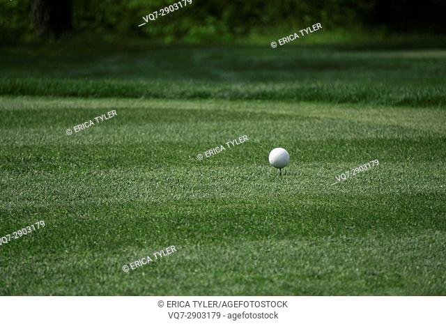 Golf Ball on a Tee at Golf Course in Westover, Maryland