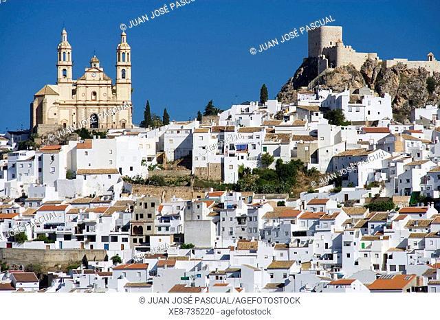 Nuestra Señora de la Encarnacion church and castle, Olvera. Cadiz province, Andalucia, Spain