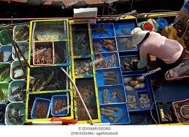 Blick von oben auf Fischhändler und Becken mit lebenden Fischen und anderen Meerestieren zum Verkauf auf einem Fischerboot, Sai Kung Stadt