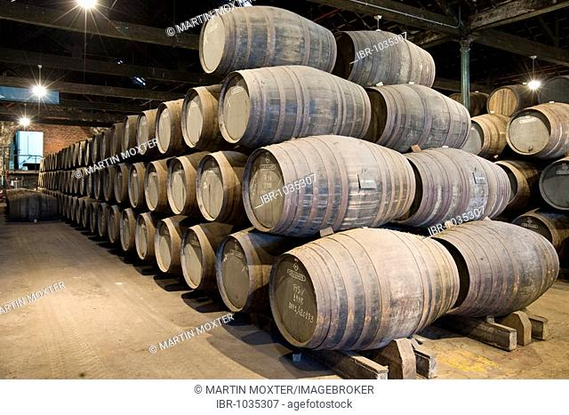 Oak barrels filled with port wine of Graham's Port Wine House on Rua Rei Ramiro, Vila Nova Gaia, Porto, UNESCO World Cultural Heritage Site, Portugal