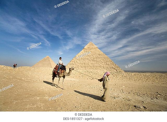A guide leading a camel and passenger by the Pyramids