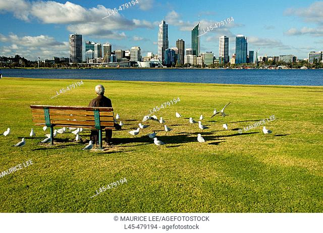 Old man surrounded by seagulls in a public park. Perth. Australia. December 2005