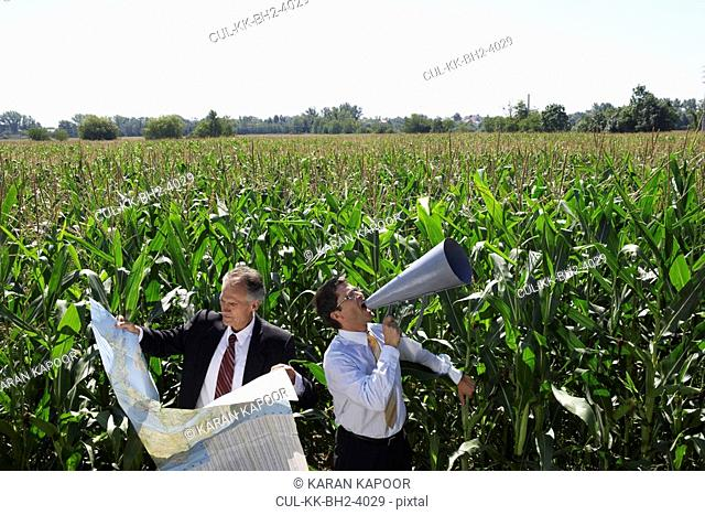 Businessmen in a cornfield with a map and megaphone