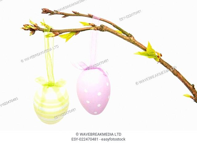 Hand painted easter eggs hanging from a branch on white background