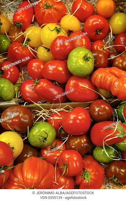 Various tomatoes. Marché des Capucins market. Bordeaux, Gironde. Aquitaine region. France Europe