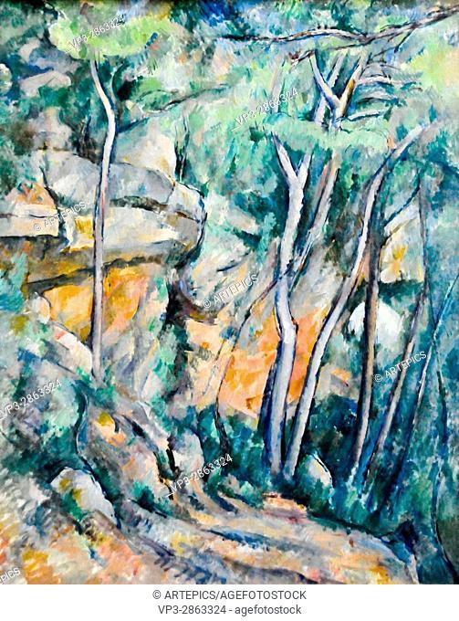 Paul Cézanne . Dans le parc de Chateau Noir. 1900 . Musée de l'Orangerie - Paris