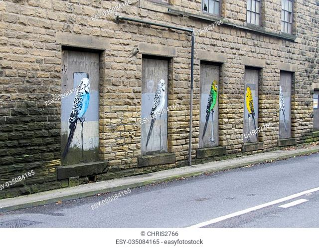 Budgie graffiti on a boarded up window