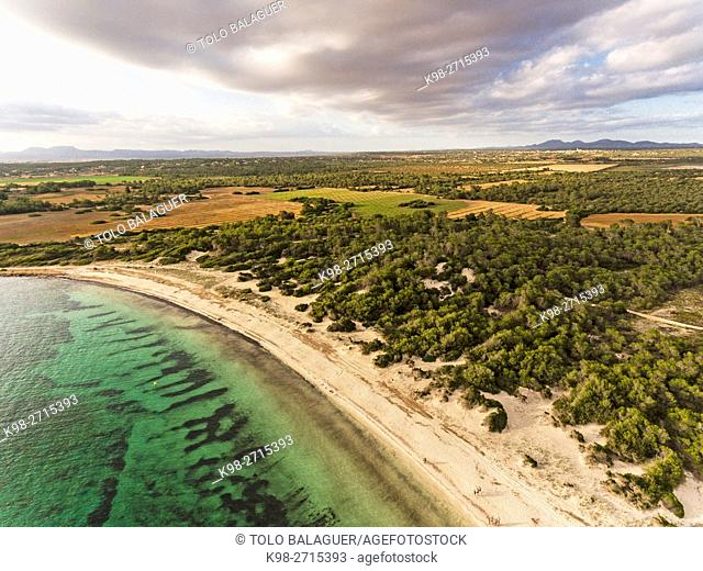 Es Dofi beach,Ses Salines, , protected natural area, Majorca, Balearic Islands, Spain