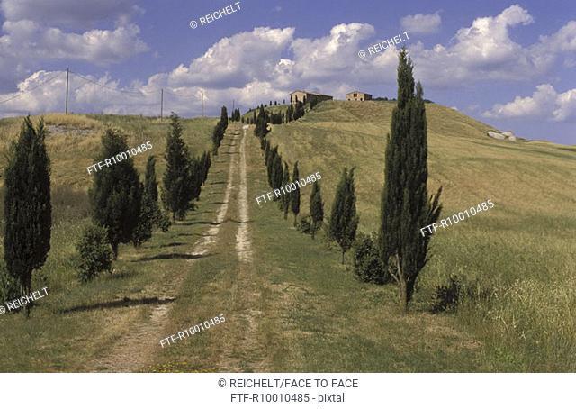 Farmstead in Crete, Toscana, Italy