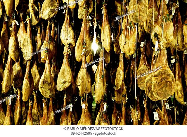 Spanish hams in a curing room in Mogarraz, Salamanca, Spain