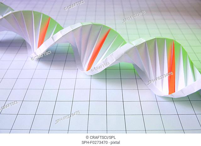 DNA (deoxyribonucleic acid) molecule with mutations, conceptual image. Origami model of DNA with deletions highlighted