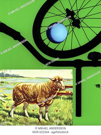A picture of a sheep, a ball and parts of a bicycle