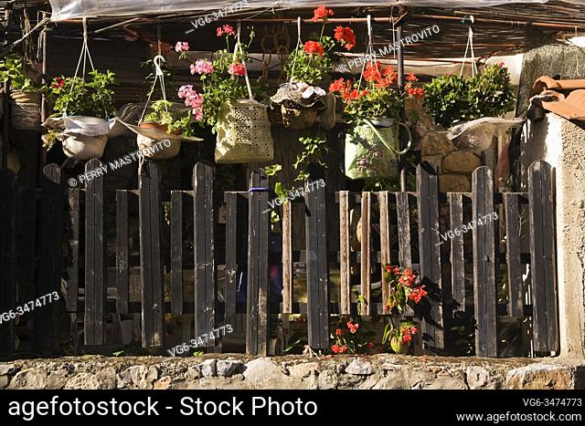Pink and red Pelargonium - Geranium flowers in hanging baskets covered with hand bags over old wooden picket fence in backyard garden in early autumn
