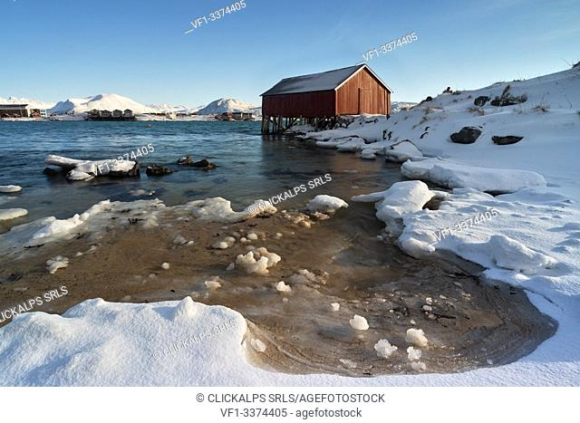 the typical rorbuer house over the coastline, Sommaroy, Brensholmvegen, Troms county, Northen Norway, Europe