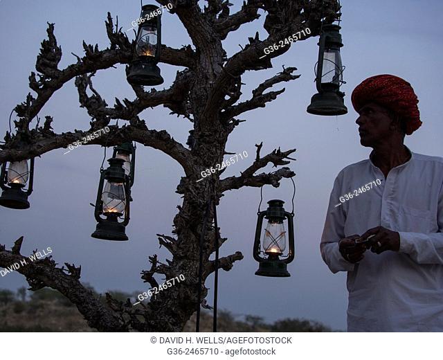 Man in turban hanging oil lamp on tree in  Chhatrasagar, Rajasthan, India