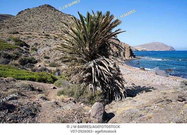 Cala de los Toros. Cabo de Gata-Nijar Natural Paek, Almeria province, Andalucia, Spain