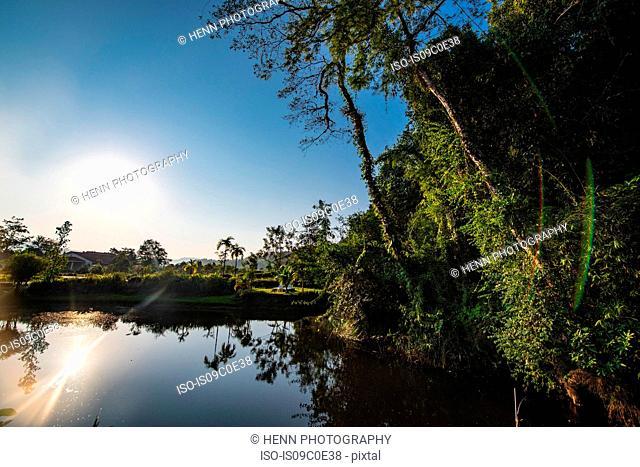 Sunrise over calm lake, Sihanoukville Province, Kampot, Cambodia