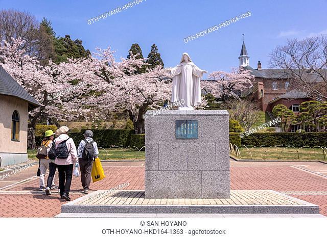 Torapisuchinu Monastery and cherry trees, Hakodate city, Hokkaido, Japan