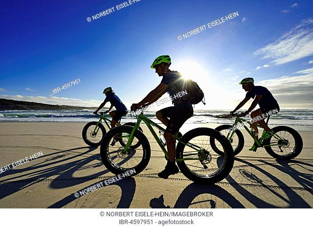 Mountain bikers with Fatbikes at the sandy beach, long shade, bicycle tour at Die Plaat Beach, Nature Reserve, De Kelders, Gansbaai, Western Cape, South Africa