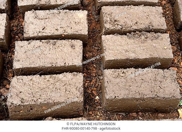 Mud bricks, for use on new house, Rwanda