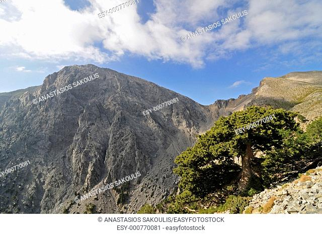 Gigilos, Lefka Ori, Crete