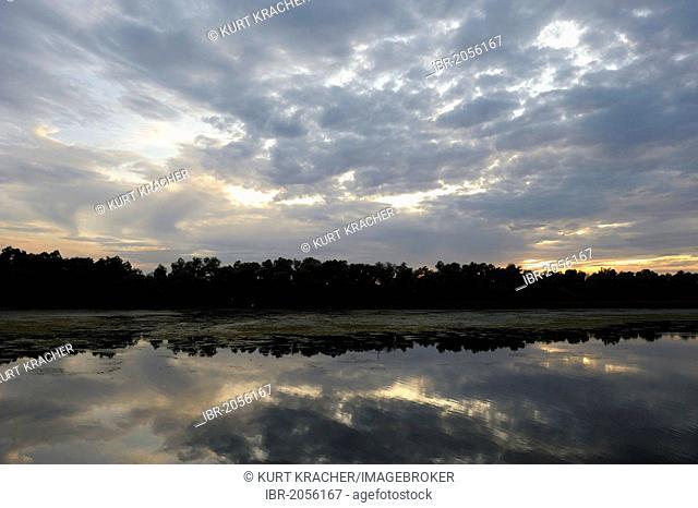 Morning mood, Danube Delta, Romania, Europe