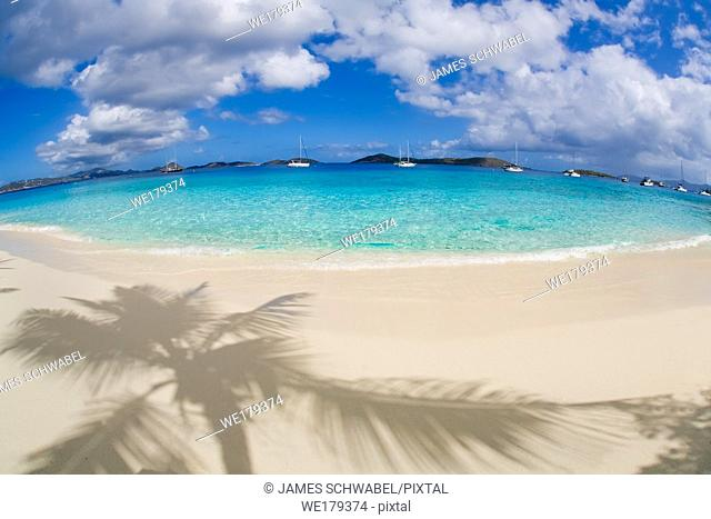 Shadows of palm trees on the beach at Salomon Beach in the Virgin Islands National Park on the Caribbean Island of St John in the US Virgin Islands