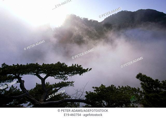 Huang Shan mountains. China