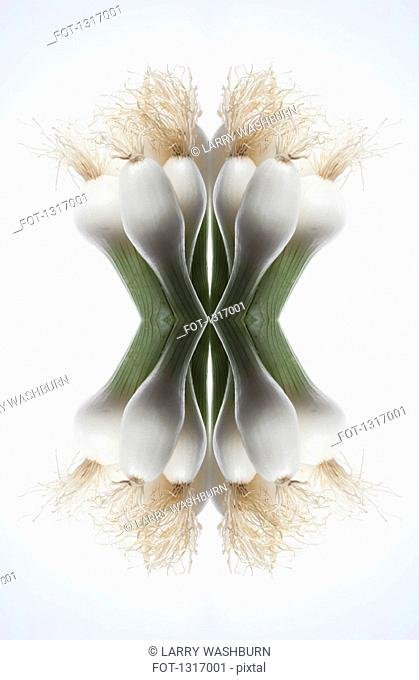 A digital composite of mirrored images of the tops of a bunch of spring onions