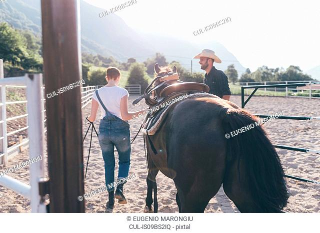 Young woman leading horse in rural equestrian arena