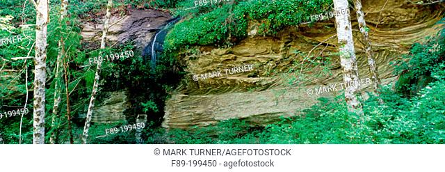 Small waterfall over eroded sandstone cliff. Siskiyou National Forest. Oregon. USA