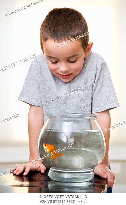 Boy (6-7) looking at goldfish in fishbowl