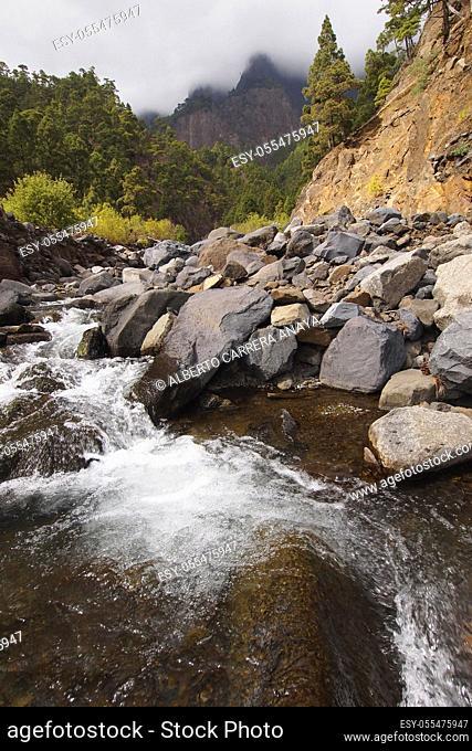 Taburiente River, Caldera de Taburiente National Park, Biosphere Reserve, ZEPA, LIC, La Palma, Canary Islands, Spain, Europe