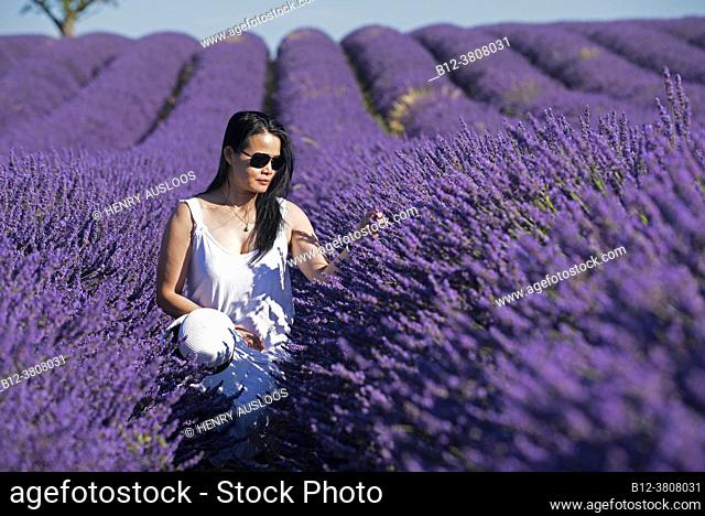 Woman walking in lavender fields, southern France
