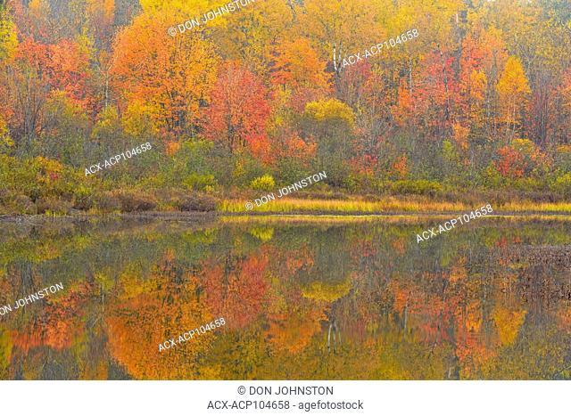 Autumn reflections in foggy Fairbank Creek, Greater Sudbury, Ontario, Canada