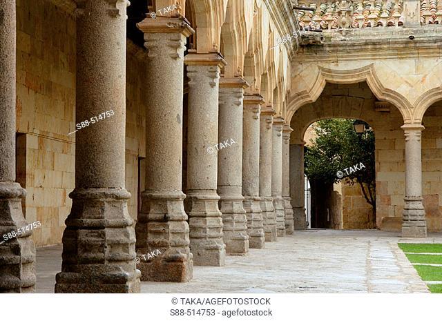 Patio de las Escuelas Menores. Salamanca. Castilla y Leon. Spain