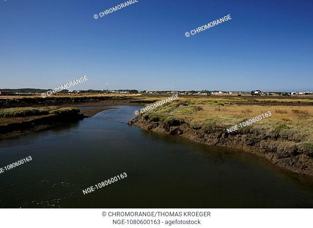 marshes march on the rio mondego river in figueira da foz coimbra destrikt portugal europe
