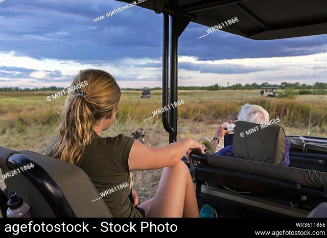 A teenage girl and senior man seated in a safari jeep observing a pack of wild dogs