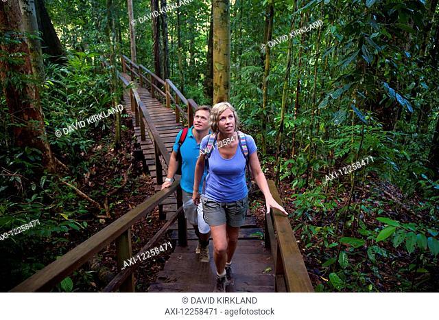 Tourist on canopy walk at Ulu Temburong National Park; Brunei