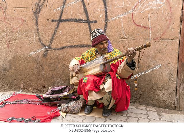 street musician with traditional lute Gimbri, Marrakesh, Kingdom of Morocco, Africa