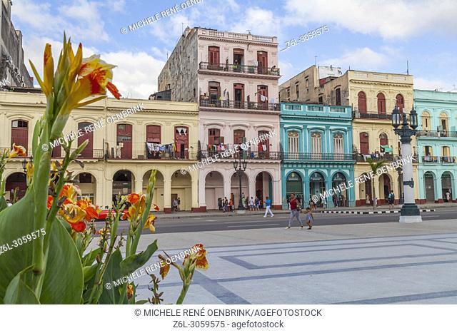 Classic 1950s cars driving down main street in Old Havana Cuba near the Capital building