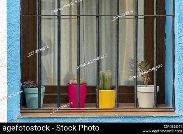 Colorful pots in blue window Mediterranean decoration in house Spain