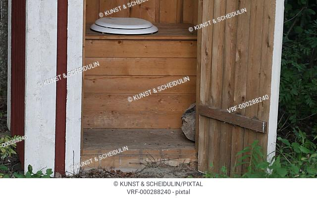 Wasps have built a nest from toilet paper in the door frame of a public toilet in a forest in northern Sweden. Tilt. Anundsjö, Västernorrlands Län, Sweden