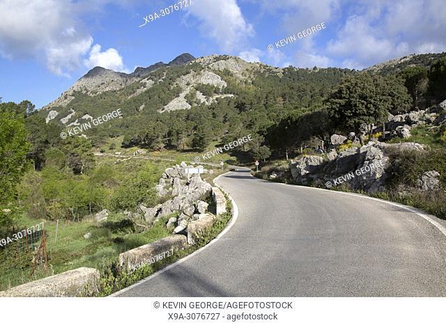 Open Road in National Park of Grazalema, Spain