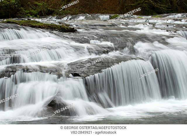 Falls on Sweet Creek along Sweet Creek Falls Trail, Siuslaw National Forest, Oregon