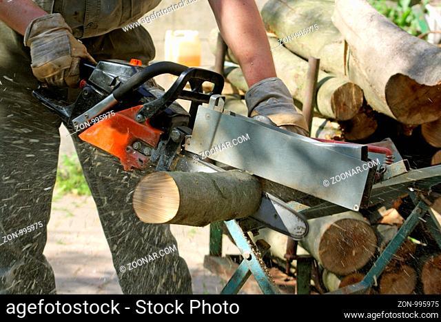Holz wird gesägt. Detailaufnahme