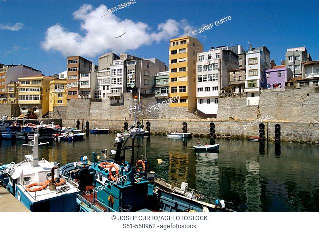 Harbour. Malpica de Bergantiños. A Coruña. Galicia. Spain