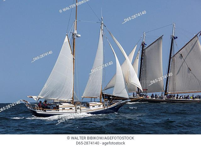 USA, Massachusetts, Cape Ann, Gloucester, America's Oldest Seaport, Gloucester Schooner Festival, schooner sailing ships