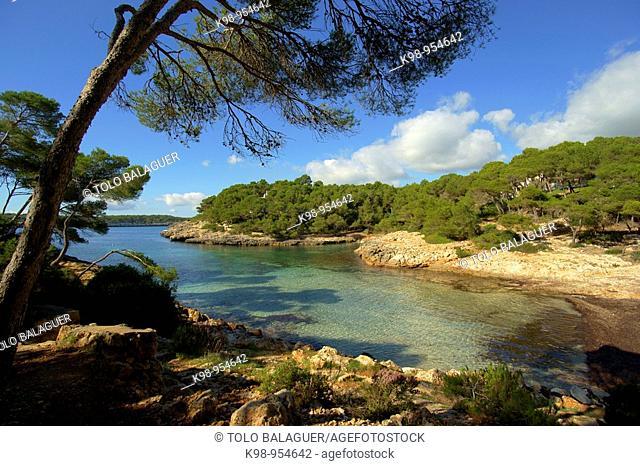Sa Barca Trencada, Mondrago Natural Park, Santanyi. Migjorn, Majorca, Balearic Islands, Spain